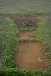 .a path to the Gazebo. by Amanda-Graham