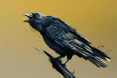 2/365 - raven by h1fey