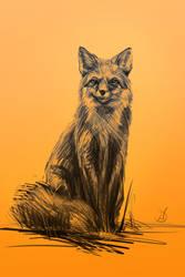 13/365 - fox by h1fey