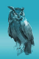 17/365 - owl by h1fey