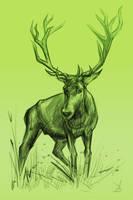 18/365 - deer by h1fey