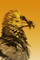 28/365 - vulture by h1fey