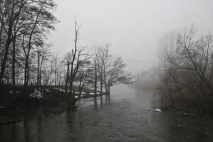 Winter fog by Seroth88