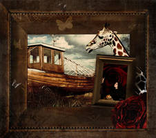frame within a frame by sinziana