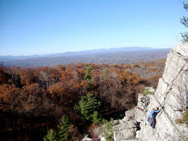 Climbing high by miss-oddball