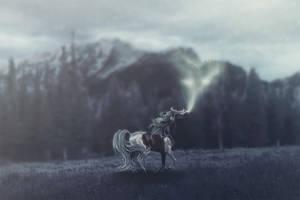 `breath of life by avicuiae