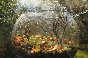 My Rainy Autumn Day by Rick-TinyWorlds