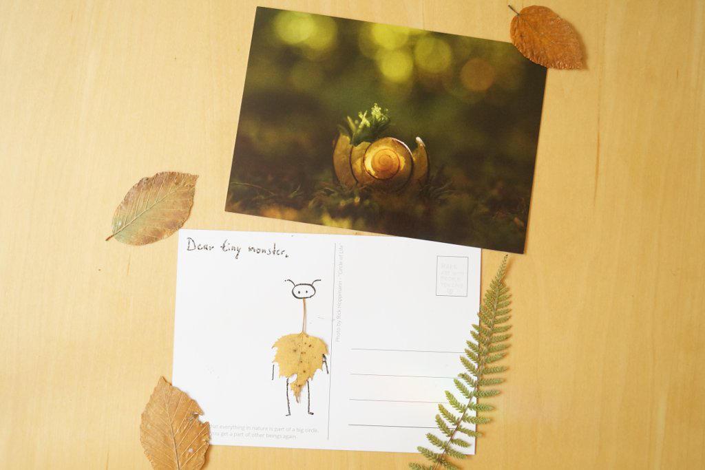 Postcard Print: Circle of Life by Rick-TinyWorlds