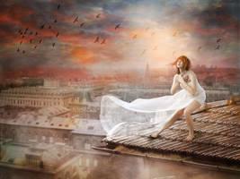 Birds over city by VitaShuba