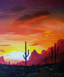 Arizona Sunset by imagesource