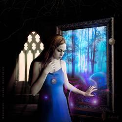 Through my own wonderland by Selenys