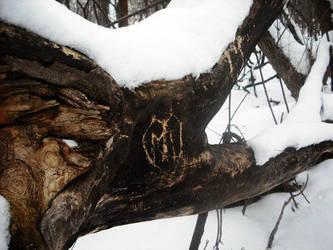 Tree by art-overflow