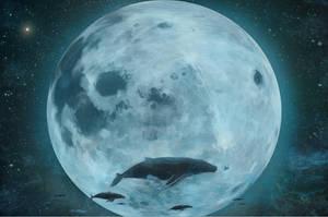 Whales by PodaViktor-SK