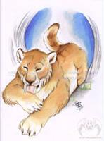 Tiger Feet by vladimirsangel