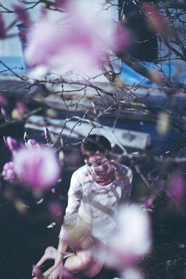 rain of petals by meyrembulucek