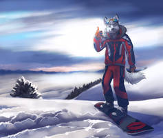 Snowboard by 2078