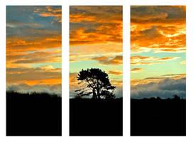 tree-ptych by eRiQ