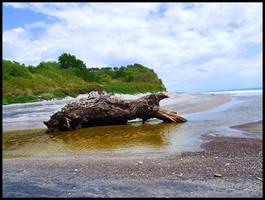 log on beach by eRiQ