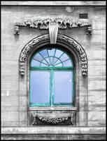 A window to Dunedin by eRiQ