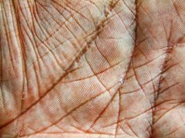 Hand Texture by eRiQ