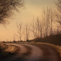 Winter road by Initio