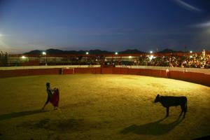 Bullfight by luv2danz