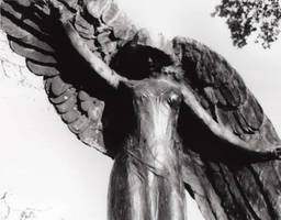 The Black Angel by luv2danz