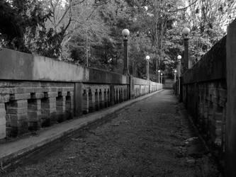 Foot Bridge by mrhollow