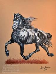 Gorgeous Friesian horse by Hei-La