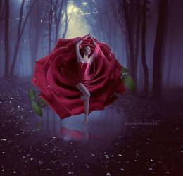 Rose by Creamydigital