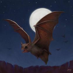 Vampire Bat by juhamattipulkkinen