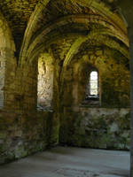 Vaulted Roof 4 by GRANNYSATTICSTOCK