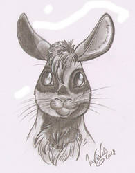 Zurebunny sketch (commission bonus: head sketch) by SkekLa