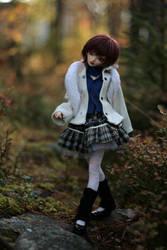 a walk in the woods ii by amomiu