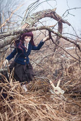 find the white rabbit ii by amomiu