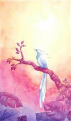 Paradisebird by schl123
