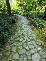 Stone Path by kinyo-spoons