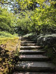 Stone Steps by kinyo-spoons
