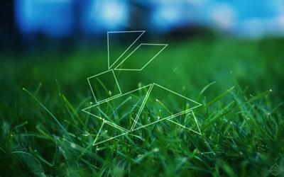 Rabbit on some Grass. by will-yen