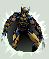 Wolverine by TimelessUnknown