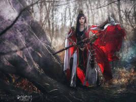 Wizard - Diablo III - Daraya cosplay by Daraya-crafts