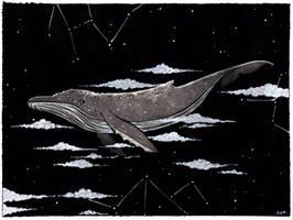 Whale by Aya-Lunar