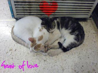 heat of Love by 4ChaMZ
