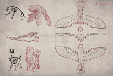 Owlf - Flying Model Sheet by PSYSpace