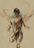 [ Metamorphosis ] by mario-alba