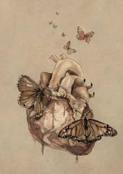 [ Butterflies ] by mario-alba