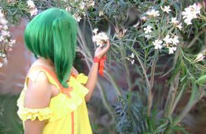 Flowers by Kuropina