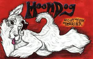 Moondog tag by TigrisTheLynx