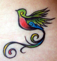 My Quetzal by vinylspin