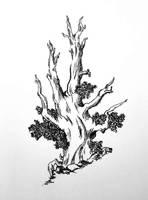 tree sketch by brittydj